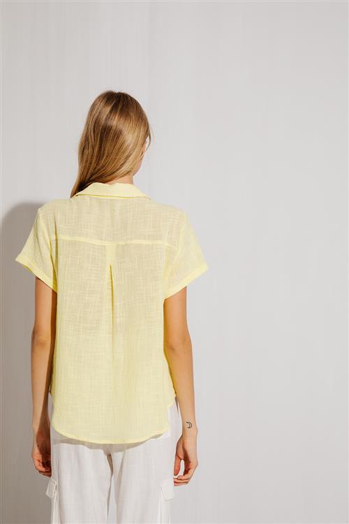 Camisa Galápagos